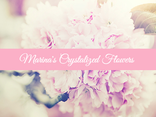 Marina's Crystalized Flowers